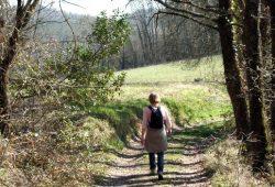 Dordogne Périgor: wandelroutes - Boucle de Castels bij Saint-Cyprien