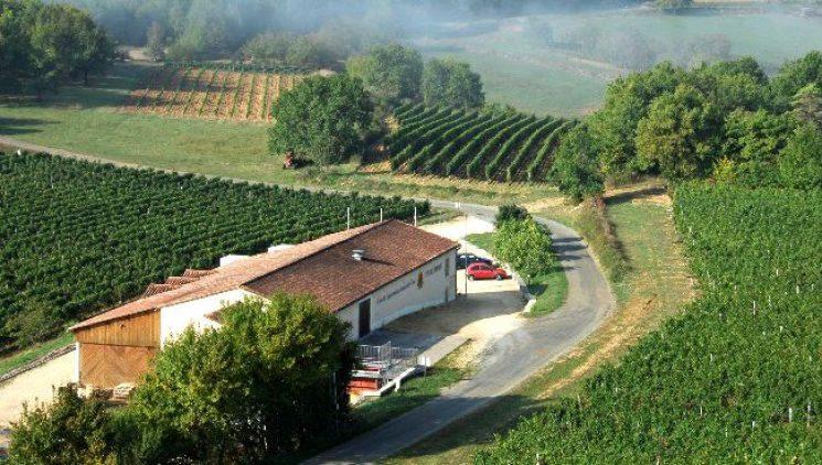 Vin de Domme blaast verdwenen wijnglorie nieuw leven in