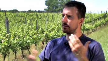 Dordogne Périgord: maître de chai Guillaume Brujon van de Cave du Vin de Domme bij Moncalou.