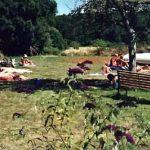 Dordogne-Périgord: naturistencampings, naturisme, naaktrecreatie: Le Coteau de l'Herm