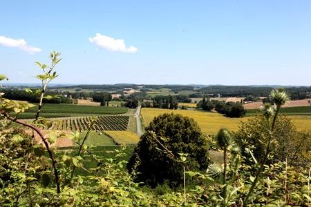 Dordogne-Perigord: Puyguilhem in Thénac - uitzicht over wijngaarden bij Bergerac.