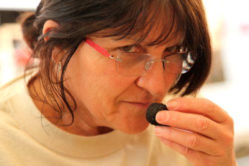 Dordogne Perigord truffels marche truffes truffle markets truffelmarkten 1