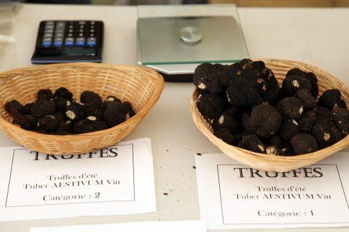 Dordogne-Perigord-truffels-marche-truffes-truffle markets-truffelmarkten